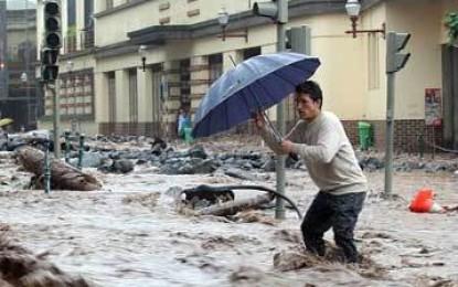Governo da Madeira aprova projectos de reconstrução pós-temporal de quatro milhões de euros